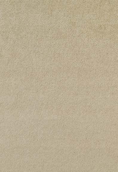 Golden Velvet -samettituoli – vaalean beige